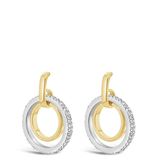 Absolute Gold & Silver Earrings