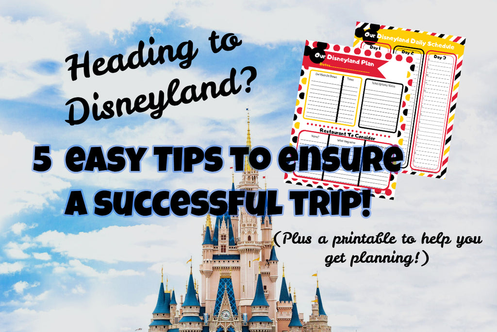 5 Tips for a Successful Disneyland Trip