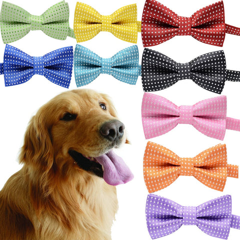 Bow Tie for Dogs