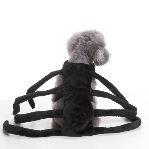 Spider Halloween costume for Dogs