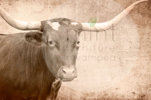 TEXAS LONGHORN Decoupage Paper | MINT by Michelle | Decoupage Paper for Furniture