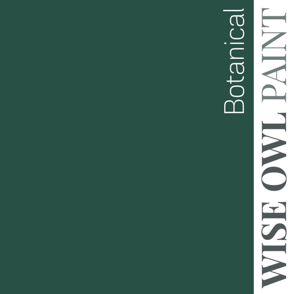 BOTANICAL | Tropical Foliage Green | One Hour Enamel Paint | Wise Owl Paint