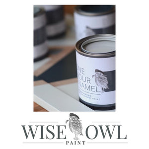 CARBON | Dark Charcoal Grey | One Hour Enamel Paint | Wise Owl Paint