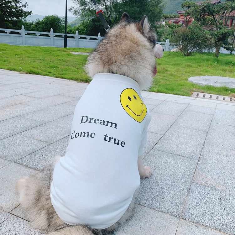 Dream comes true Big Doggo Drip T Shirt