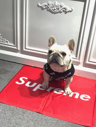 Supreme Royal Doggy Mat (HOT ITEM)