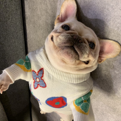Hype Pup Drip Sweater
