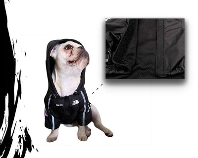 Pupreme Dogface USA Swag Raincoat (LIMITED EDITION!)