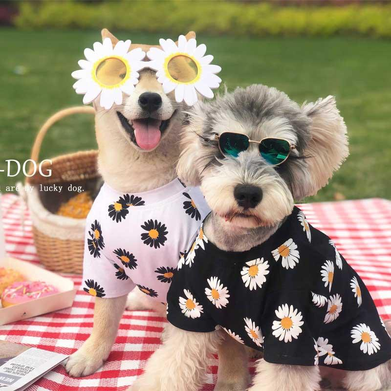 Cute Flower Picnic Sun Shirt