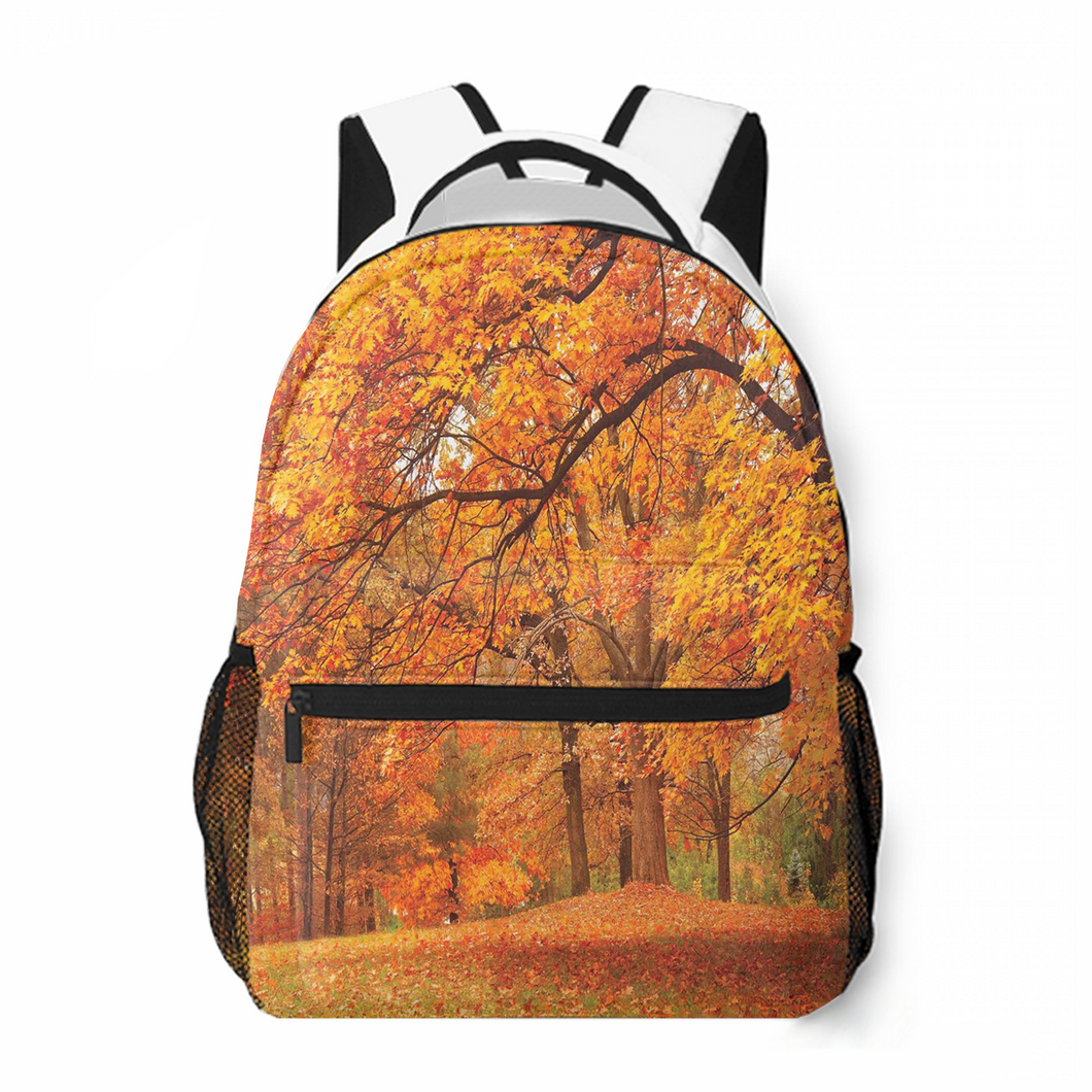Autumn Season Leisure Backpack Commuting To School Large Capacity Personalized Customized Backpack