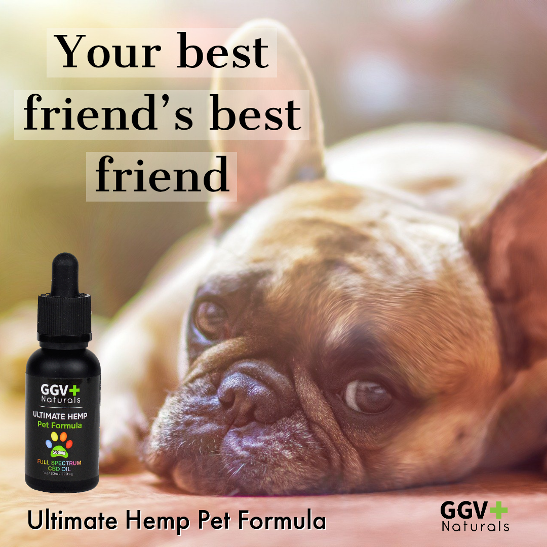Ultimate Hemp Pet Formula 500mg - GGVNaturals