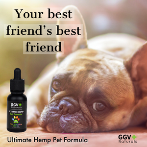 Ultimate Hemp Pet Formula 500mg-GGVNaturals
