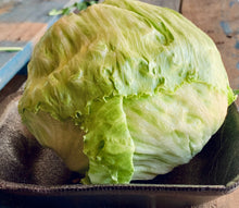 Load image into Gallery viewer, Lettuce Iceberg