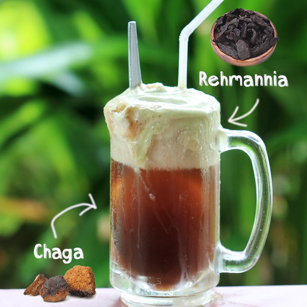 Jing Soda® Root Beer Concentrate