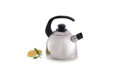 Saladmaster Whistling Tea Kettle