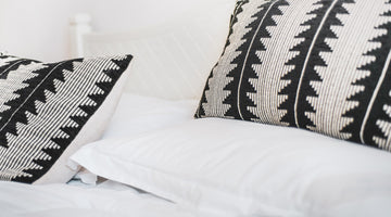 Spring Cleaning: The Pillow Guide