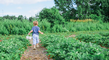 Celebrate Earth Week 2021 With These 15 Sustainability Activities for Kids