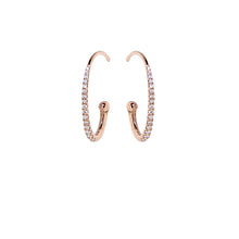 Load image into Gallery viewer, Pink Golden Diamond Earrings - Select your Favourite Pendants