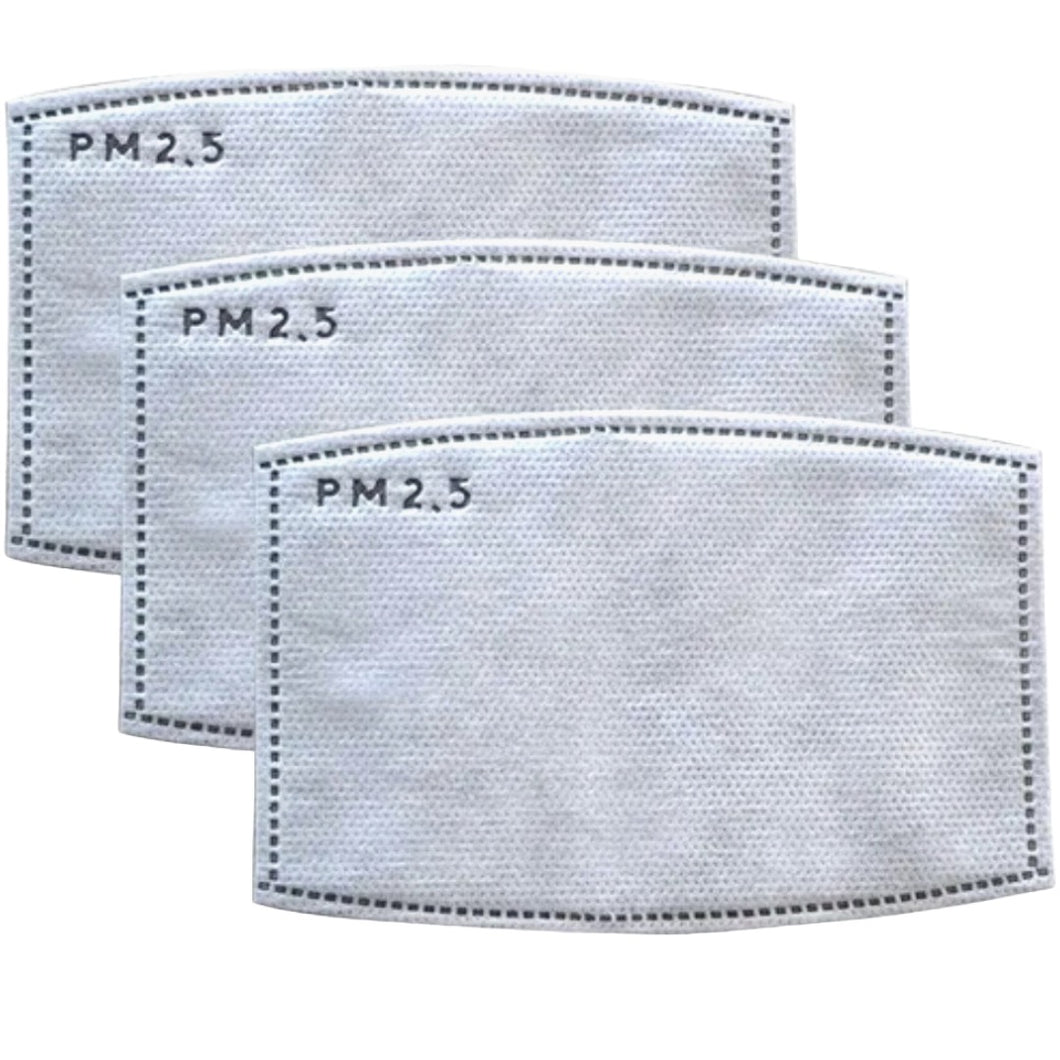PM 2.5 Filter Replacement 3 Count
