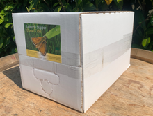 Load image into Gallery viewer, 10 Litre - Premium Cider (Bag In Box)