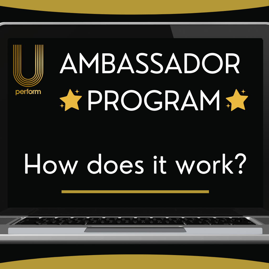 How does our Ambassador Program work?