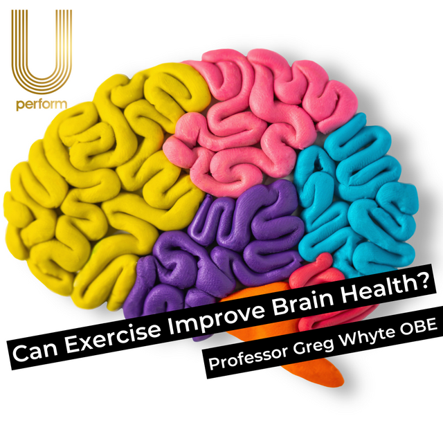 Can Exercise and Daily Activity Improve Brain Health?