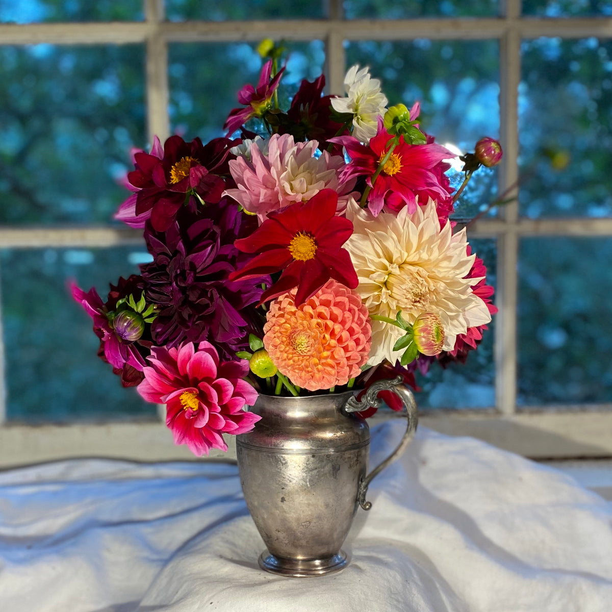 Dahlia Lovers Flower Share