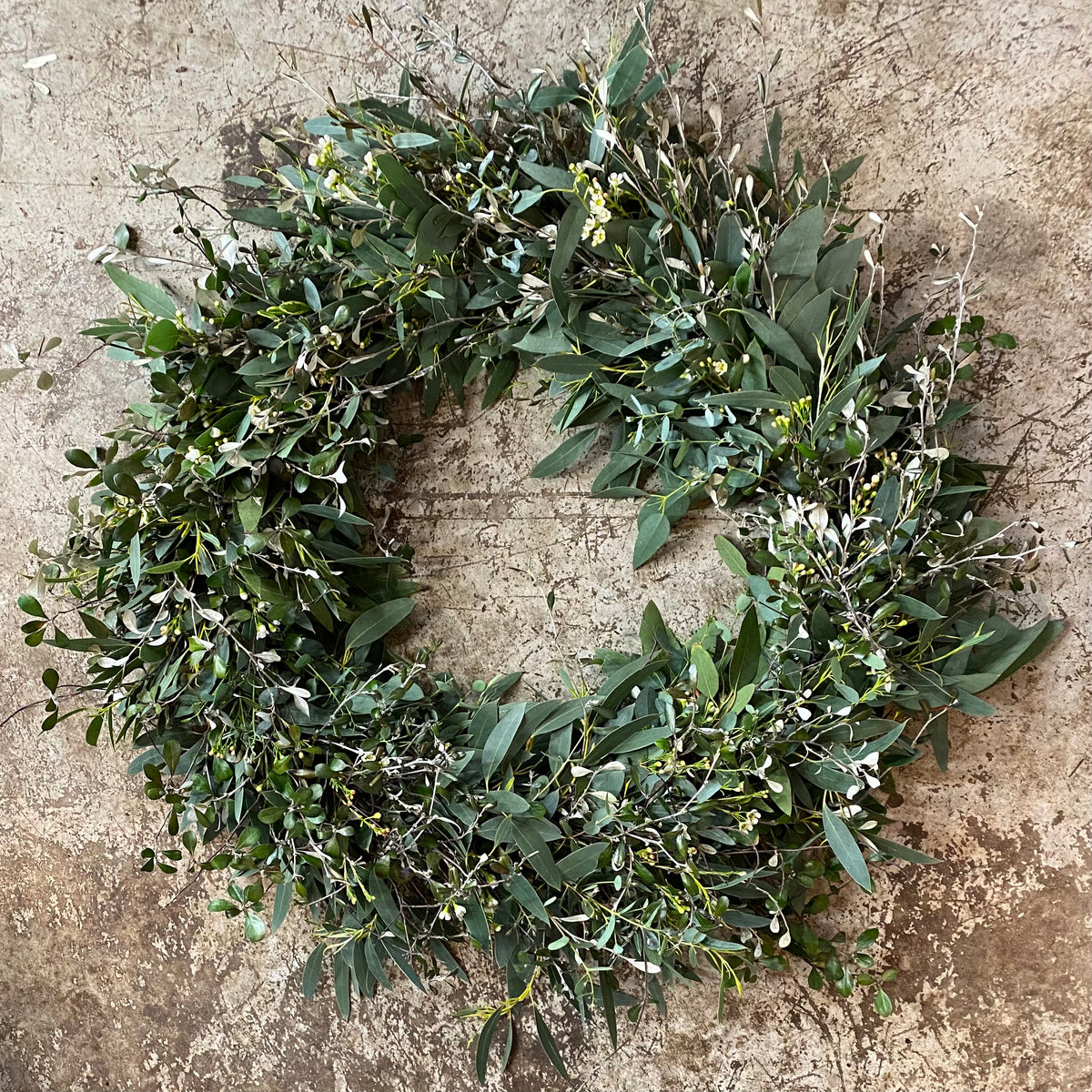 "One-of-a-kind Wreath : Eucalyptus, Corokia, Waxflower. 24"" diameter"