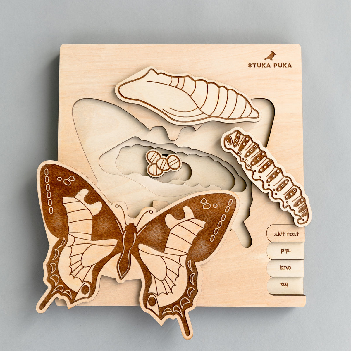 Butterfly Life Cycle Wooden Puzzle