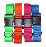 "1.5"" Solid Nylon Collar"
