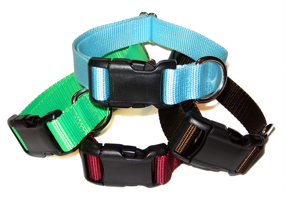 "1"" Solid Nylon Collar"