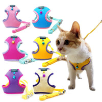 Hand- in-Hand Cat Harness and Leash Set