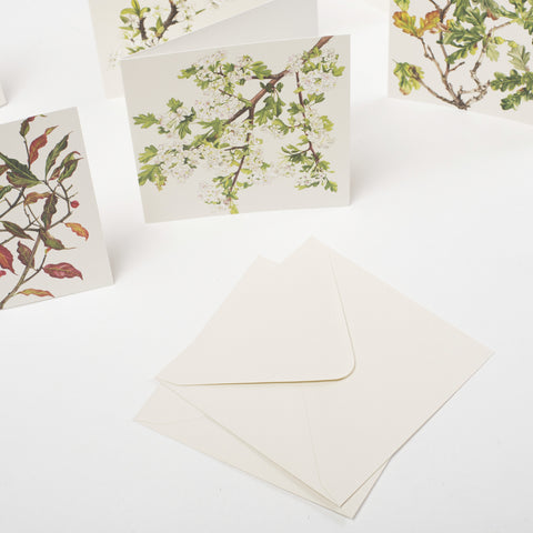 cards & envelopes, designed & made in West Cork