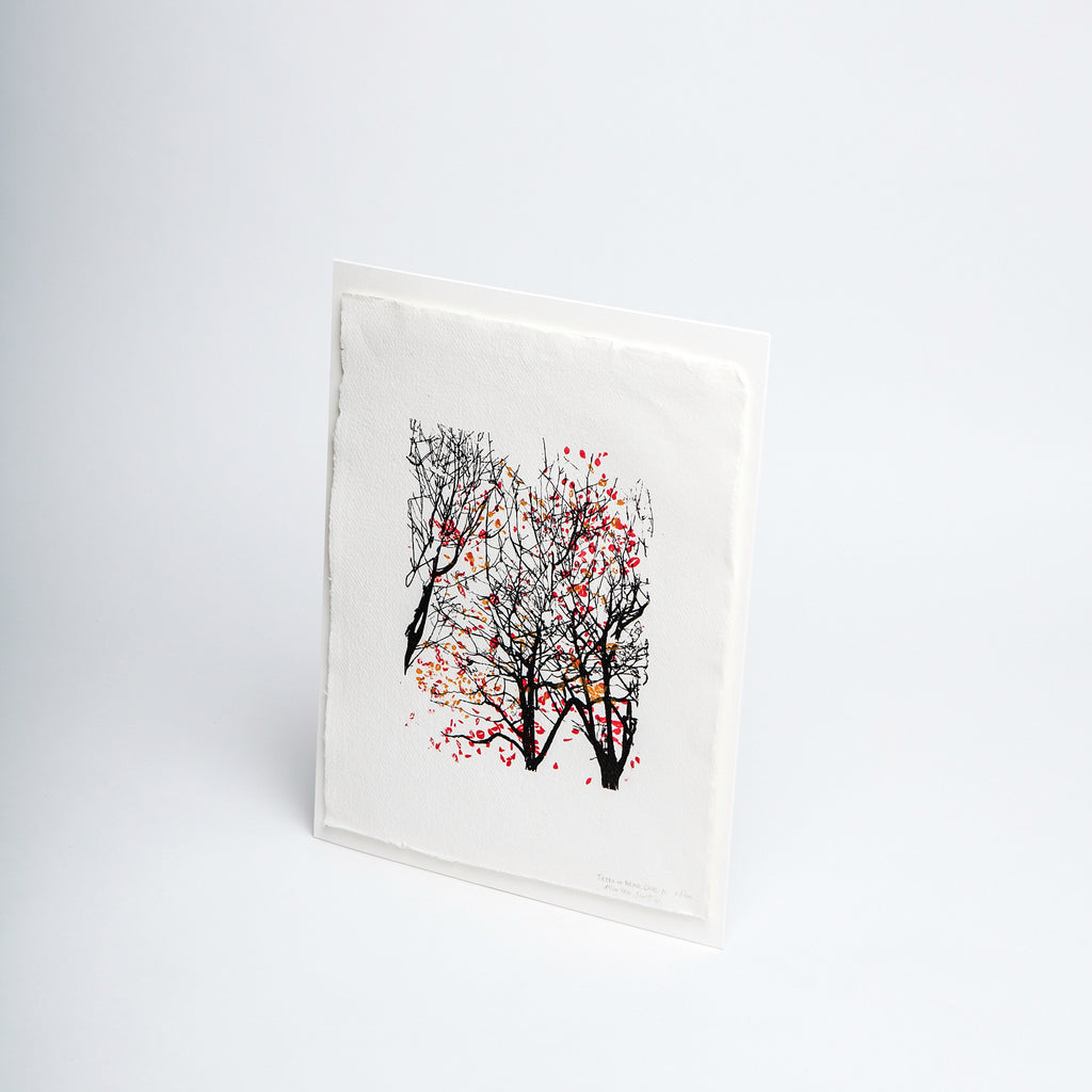 bare trees drawing, falling red and brown leaves, handmade paper, simplistic limited edition art for Irish home.  Trees at NCAD. Handmade paper data-zoom=