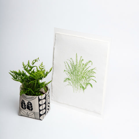 Green fern print, limited edition print on handmade paper, by Martina Scott