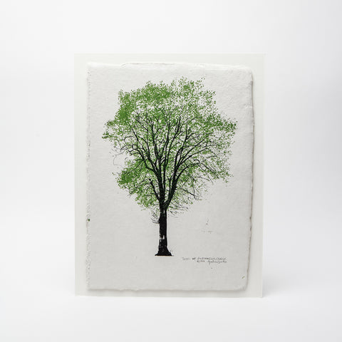 Martina Scott print 'Trees at Portobello', Handmade paper print, Irish screen print