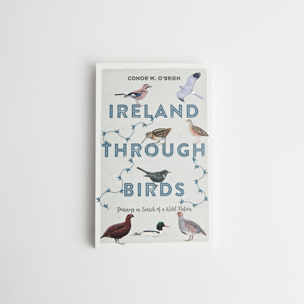 Ireland Through Birds data-zoom=