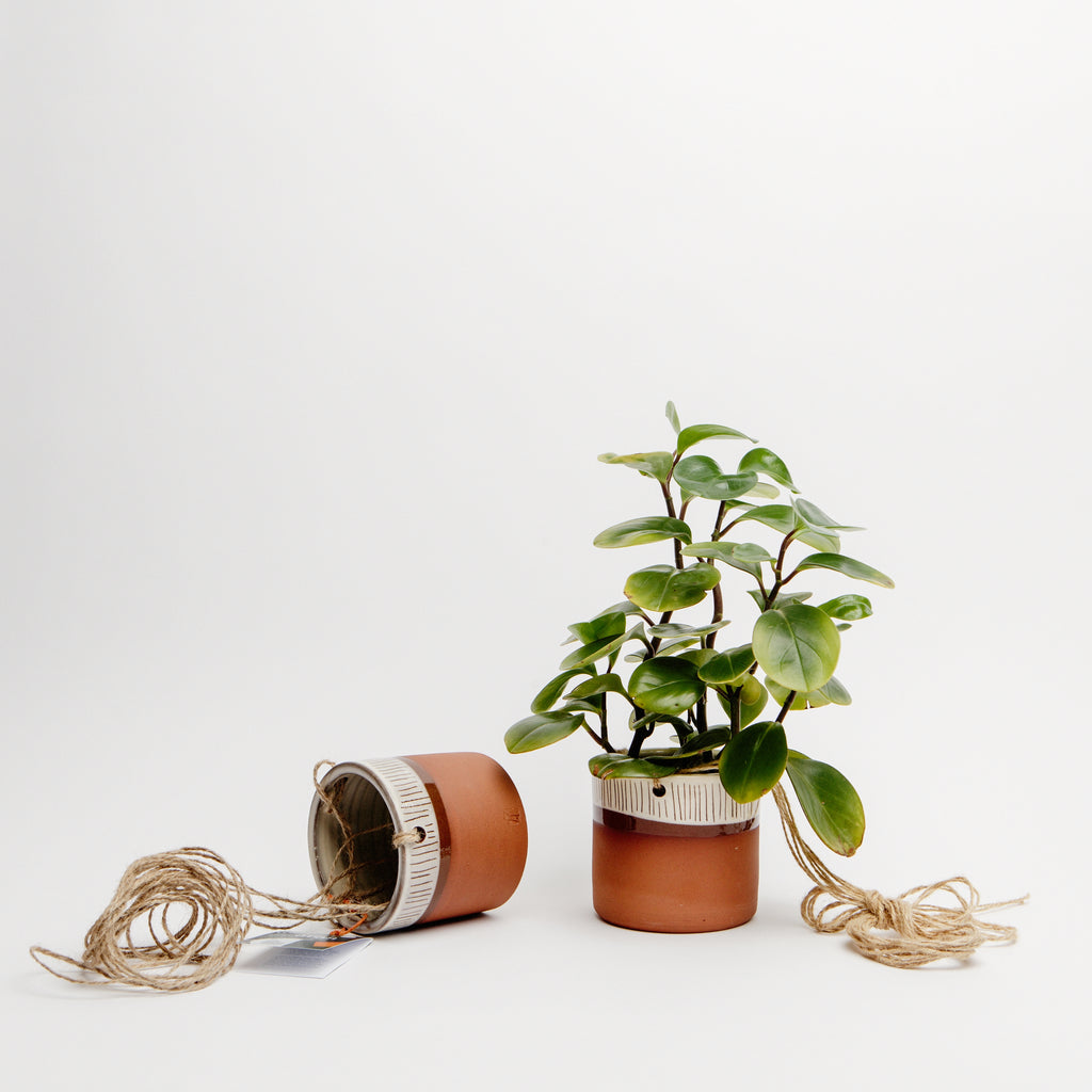 Hanging Plant Pot data-zoom=