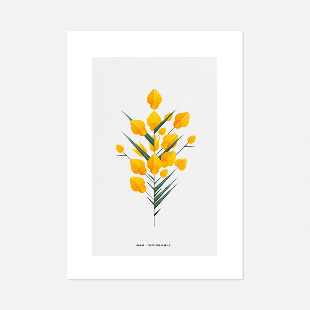 Print of Irish plants, gorse tree, yellow flower, geometric style by Sally Caulwell data-zoom=