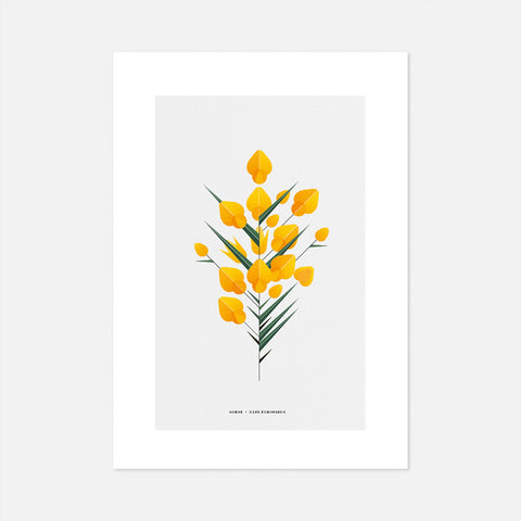 Print of Irish plants, gorse tree, yellow flower, geometric style by Sally Caulwell