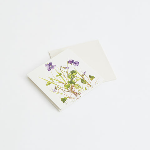 Dog Violet card & evnvelope