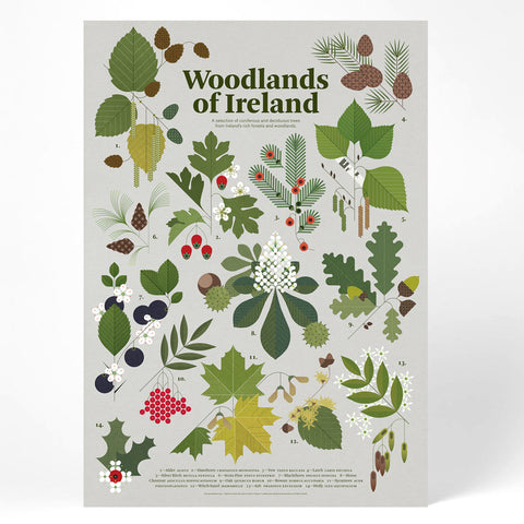 Woodlands of Ireland Print
