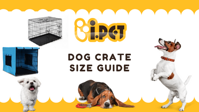 Choosing the right crate size for your puppy and dog
