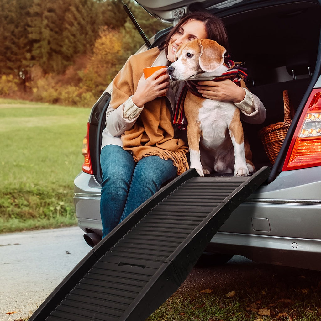 Dog Ramp Dog Steps for Cars iPet