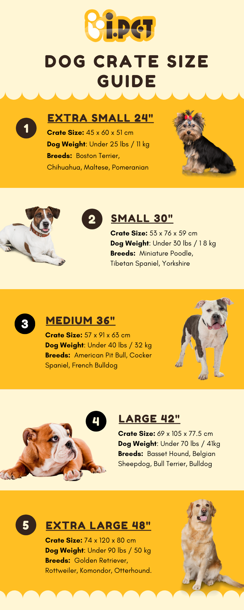 i.Pet Supplies Online Australia Dog Crate Size Guide What Size Dog Cage