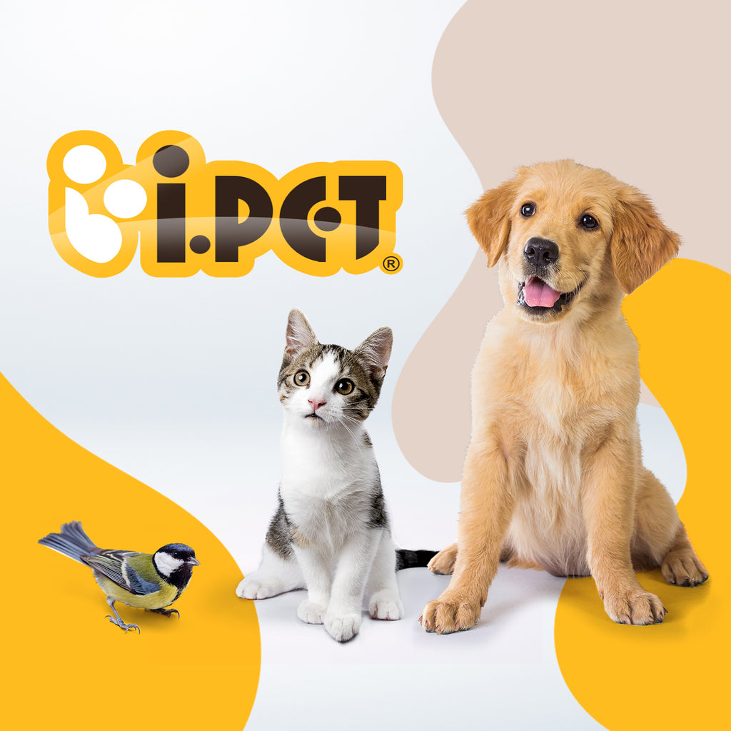 iPet Australia Pet Supplies Online
