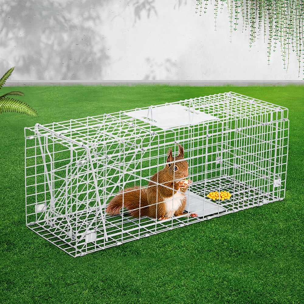 i.Pet Humane Animal Trap Cage 66 x 23 x 25cm  - Silver - i.Pet Pet Supplies Australia