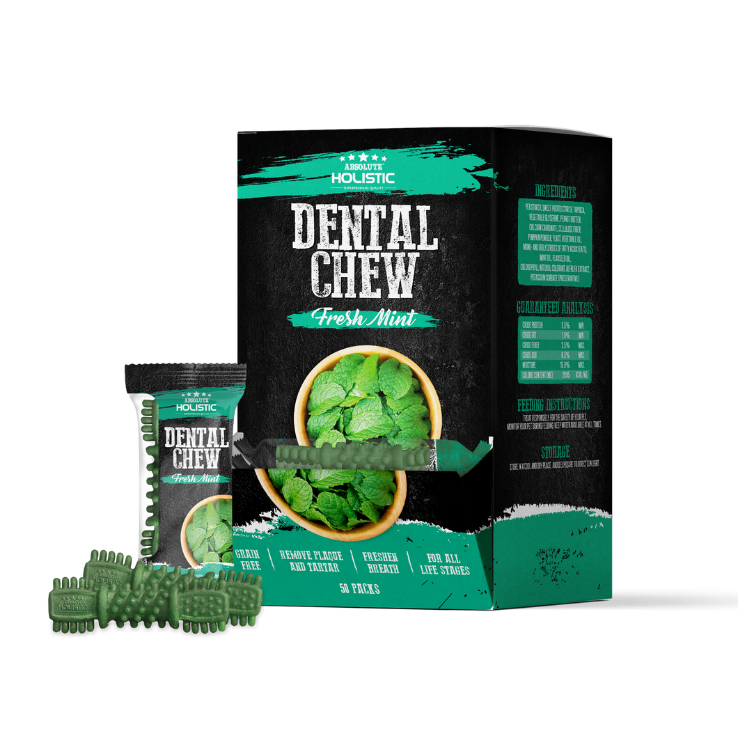 Absolute Holistic Dental Chew - Mint