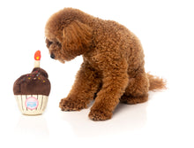 Load image into Gallery viewer, FuzzYard Plush Toys - Birthday Cupcake