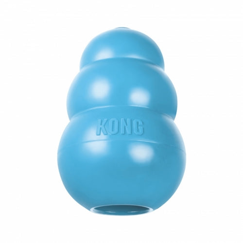 KONG® Puppy Toy (S) (Blue/Pink)