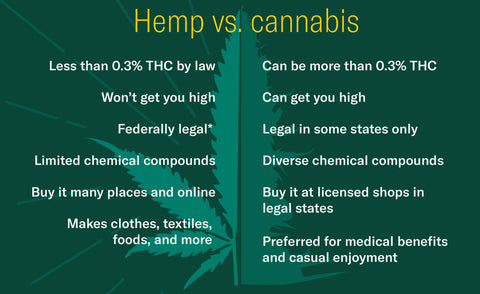 hemp vs cannabis bullet point chart breakdown comparison | Blumenes CBD blog